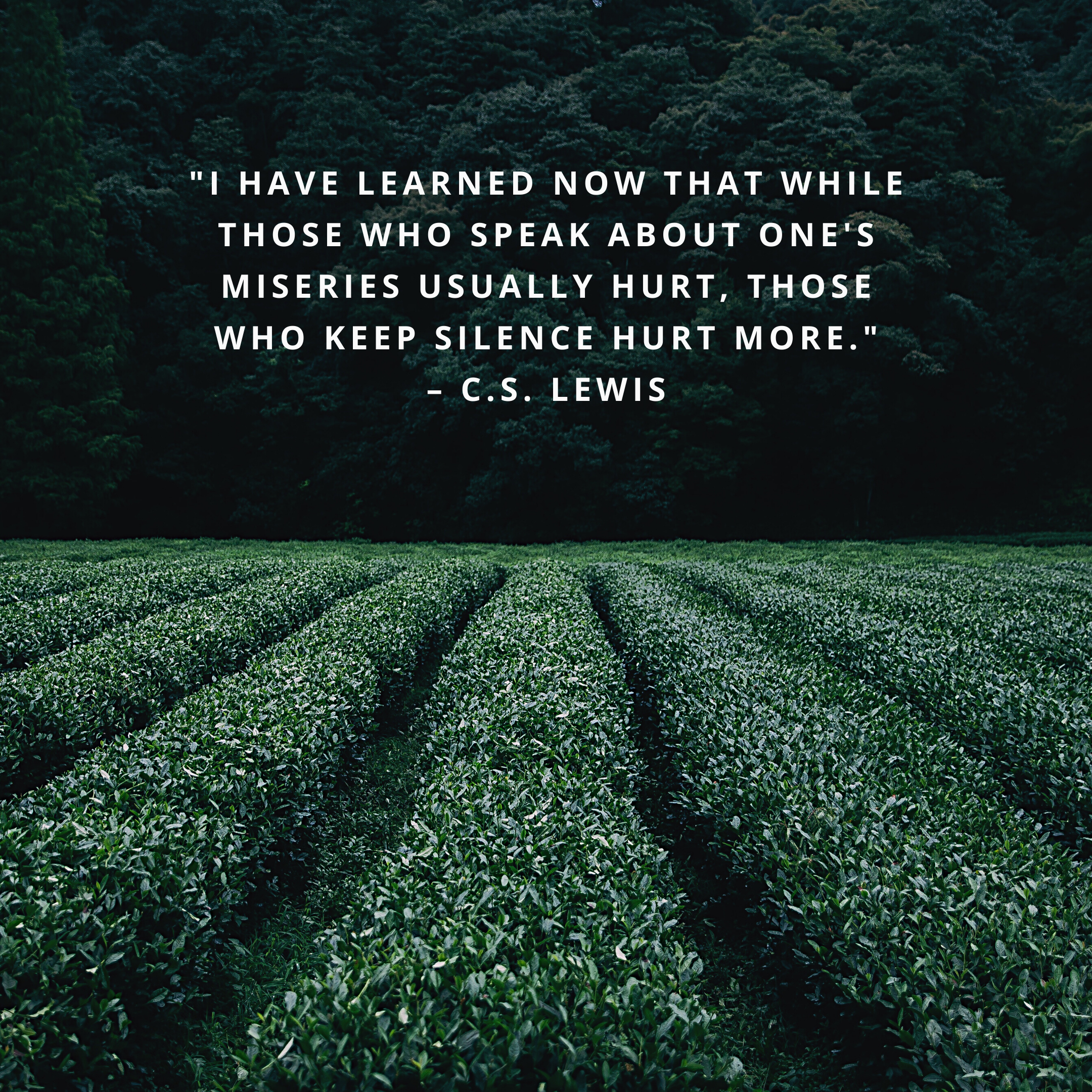 """""""I have learned now that while those who speak about one's miseries usually hurt, those who keep silence hurt more."""" –C.S. Lewis"""