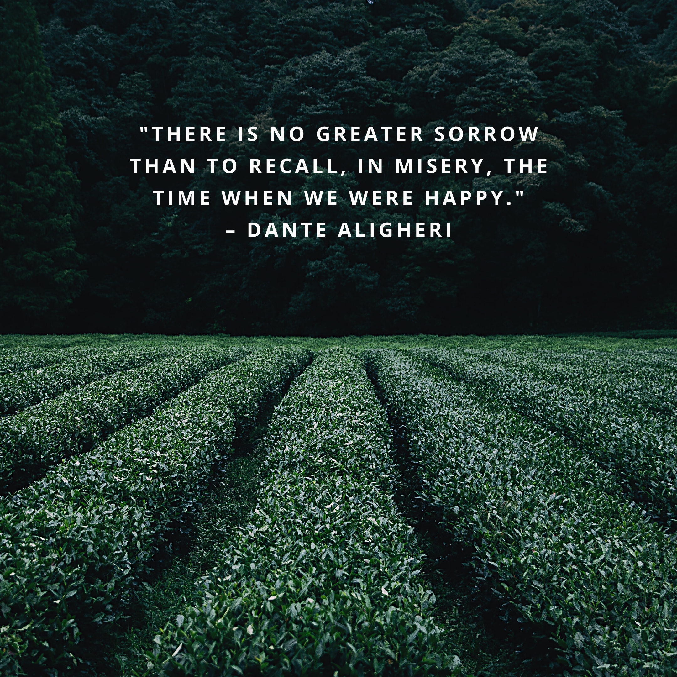 """""""There is no greater sorrow than to recall, in misery, the time when we were happy."""" –Dante Aligheri"""