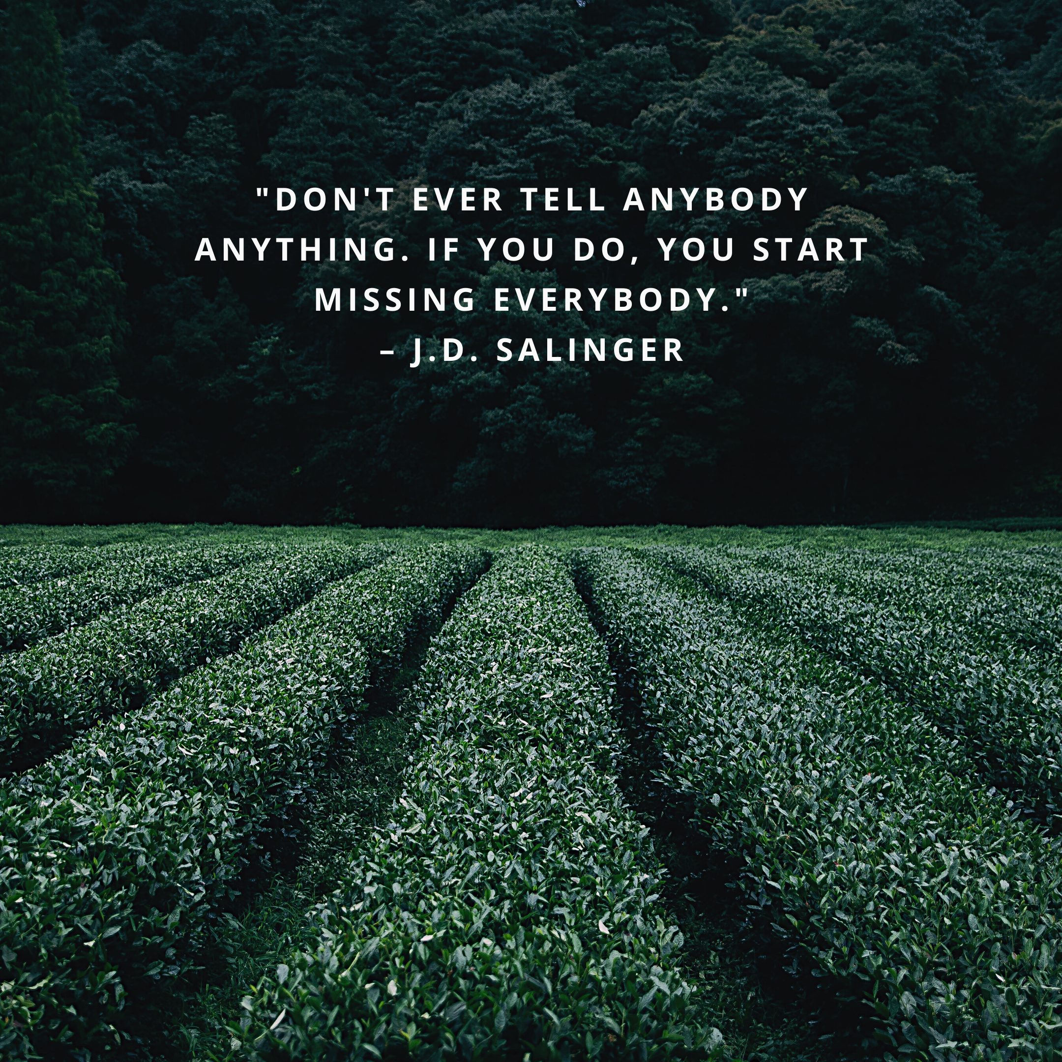 """""""Don't ever tell anybody anything. If you do, you start missing everybody."""" –J.D. Salinger"""