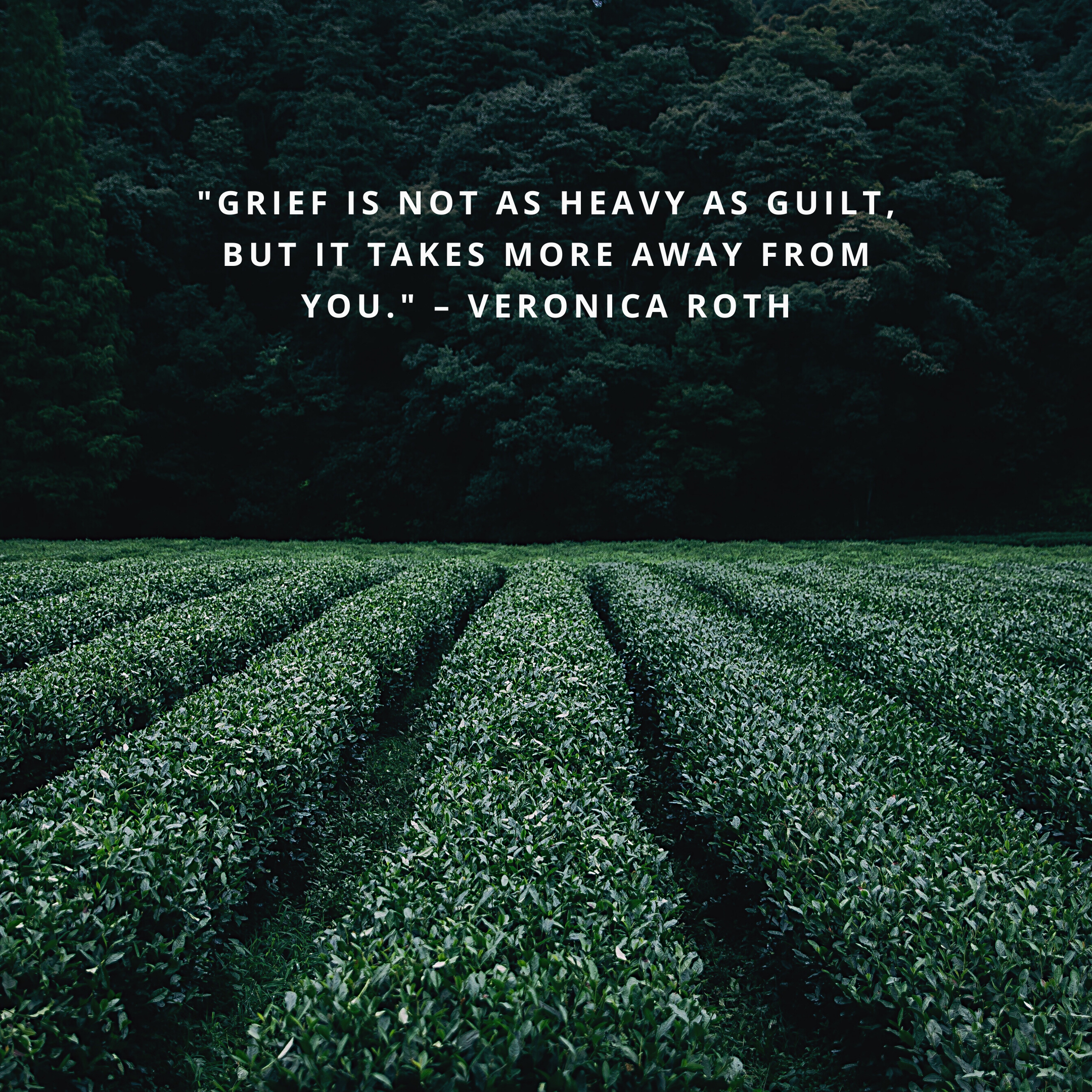 """""""Grief is not as heavy as guilt, but it takes more away from you."""" –Veronica Roth"""