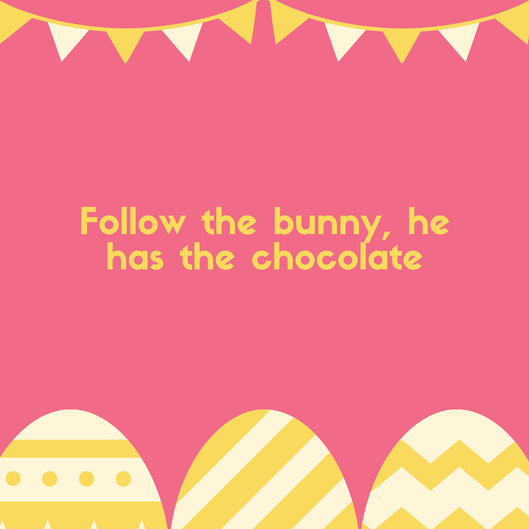 Follow the bunny, he has the chocolate