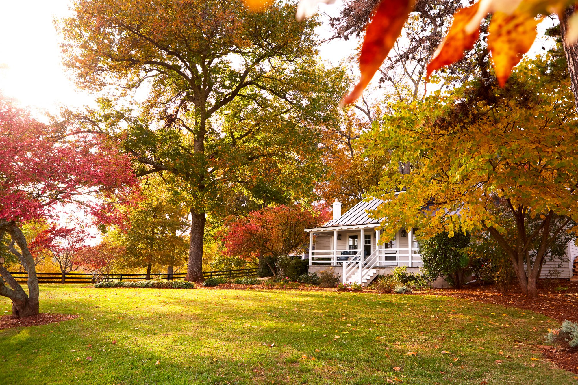 Madison Spencer Virginia Cottage with Fall Leaves