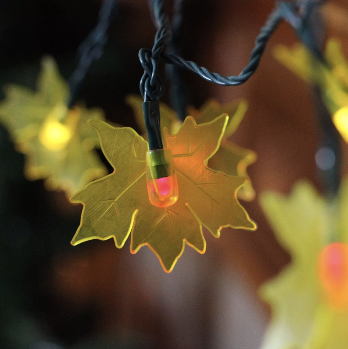 Northlight 10 Yellow Maple Leaf Autumn Fall LED Novelty Thanksgiving Lights