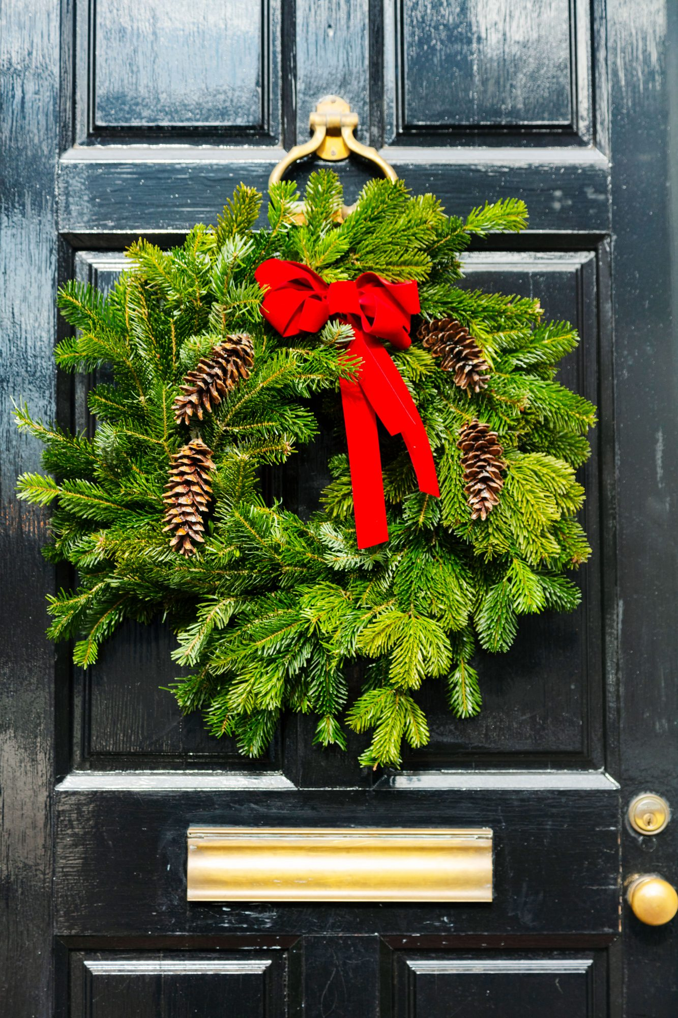Front Door Wreath in Alexandria, VA