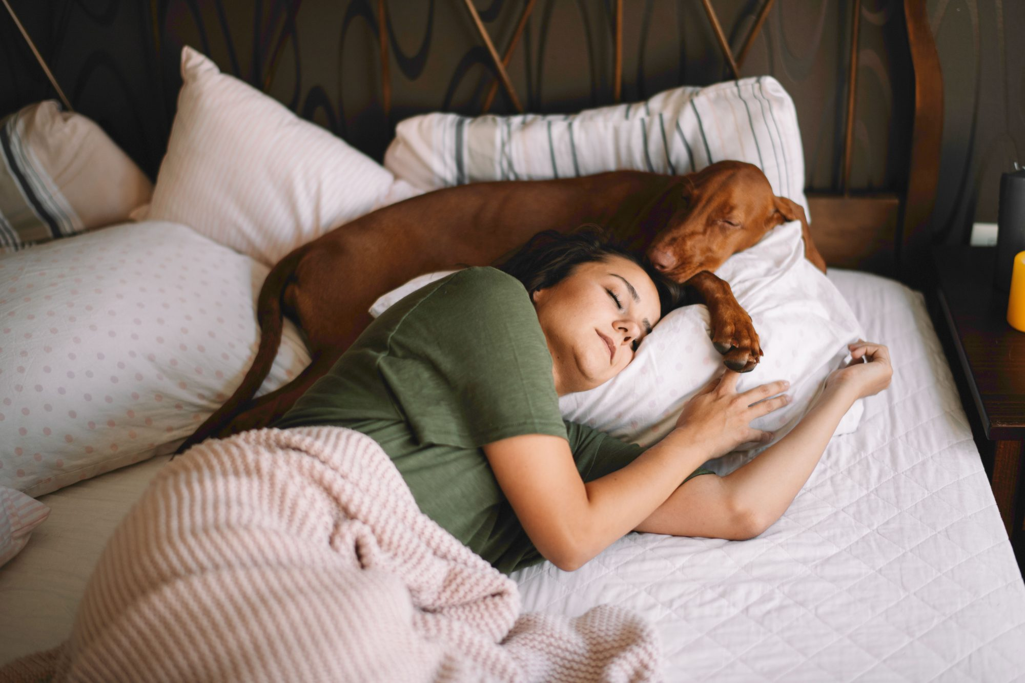 Is It Ok To Let Your Dog Sleep In Bed Southern Living