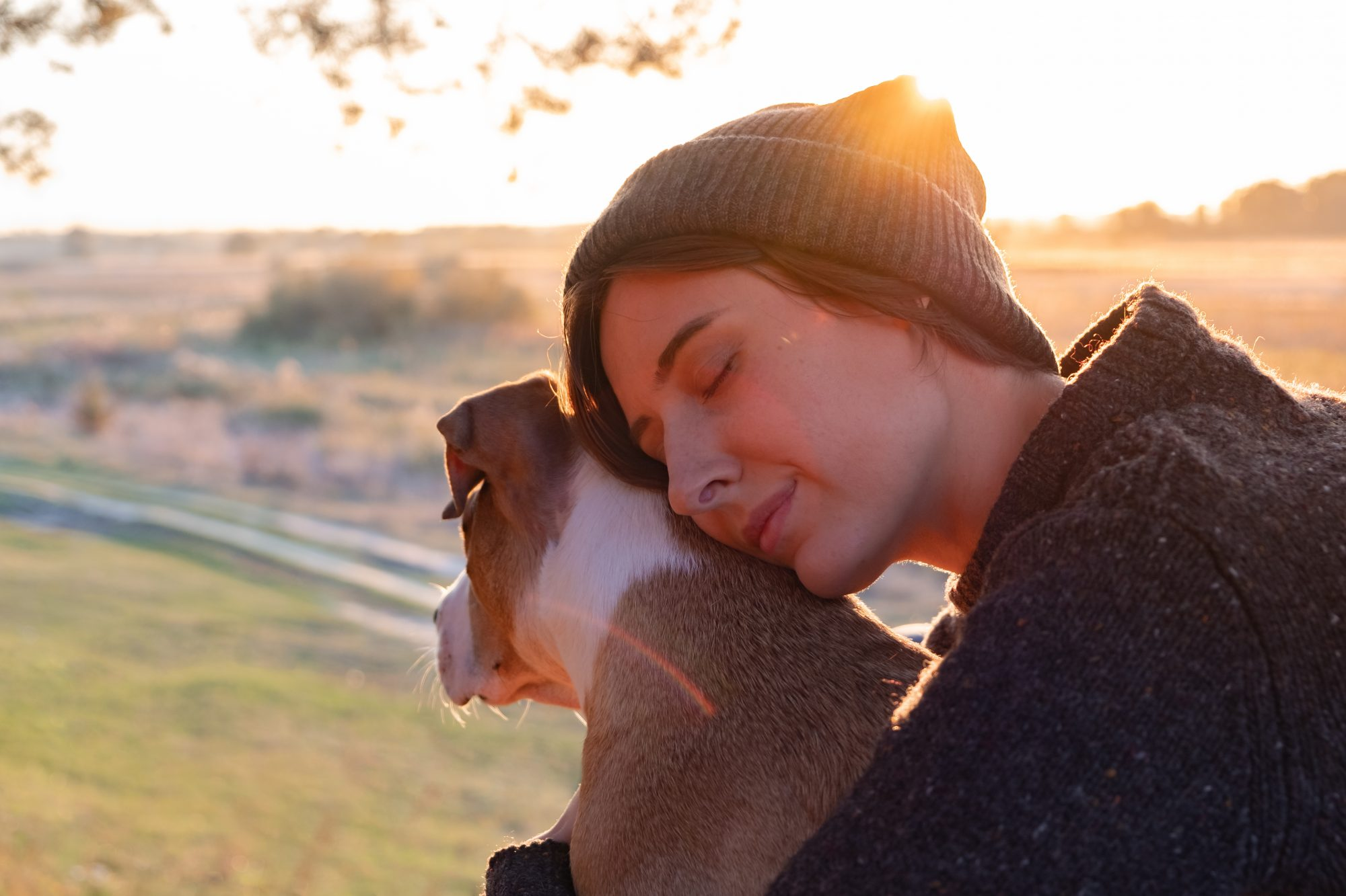 Hugging a dog in beautiful nature at sunset