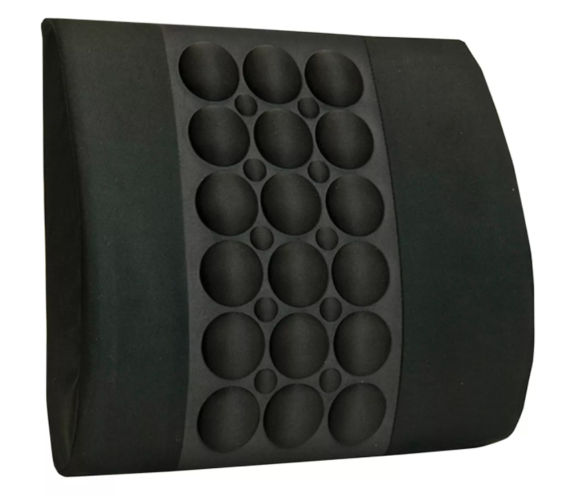 Back Cushion and Lumbar Support