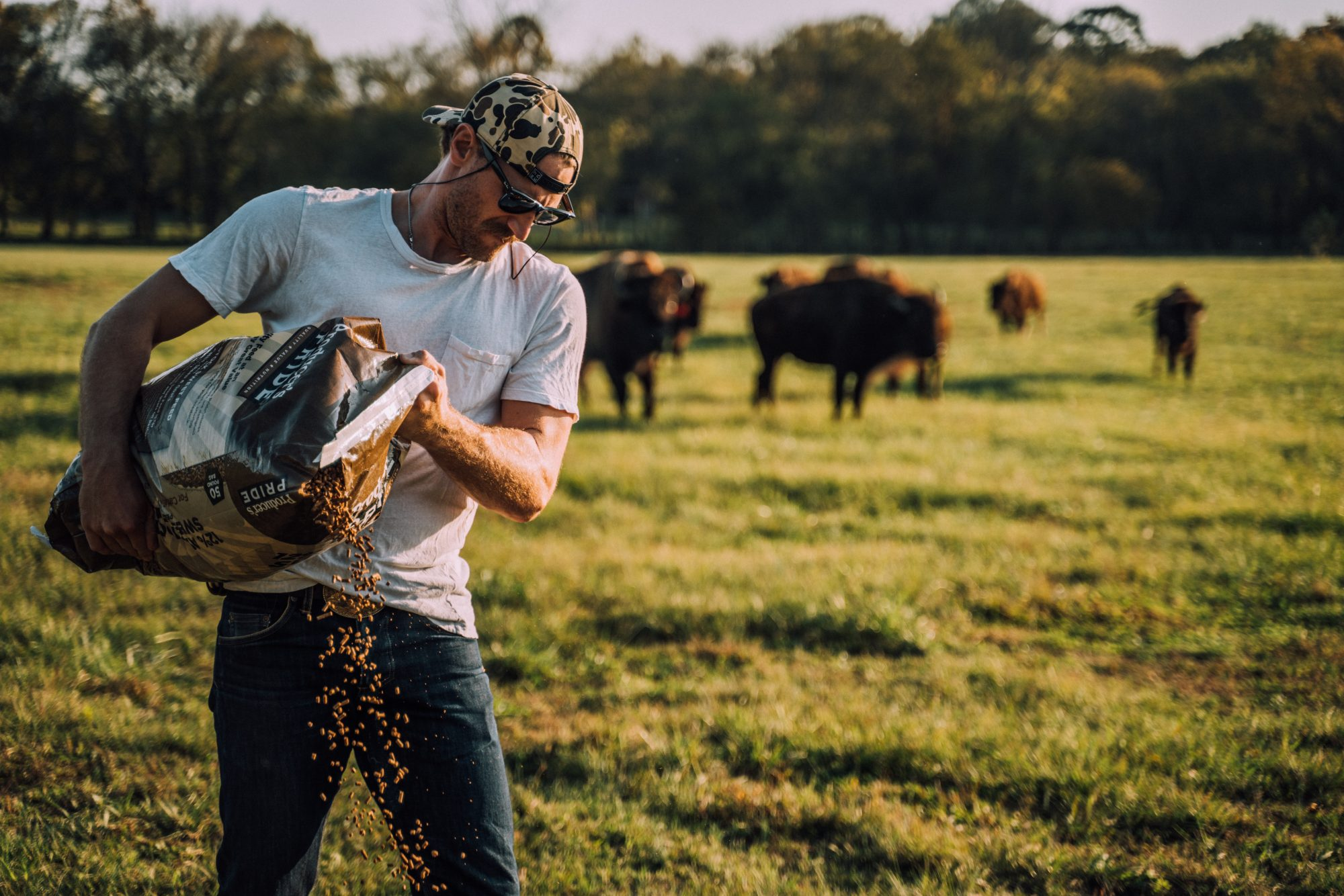Chase Rice Bison