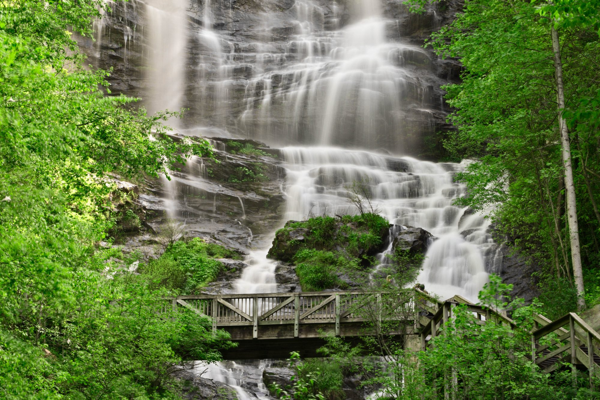 Amicalola Falls And Bridge