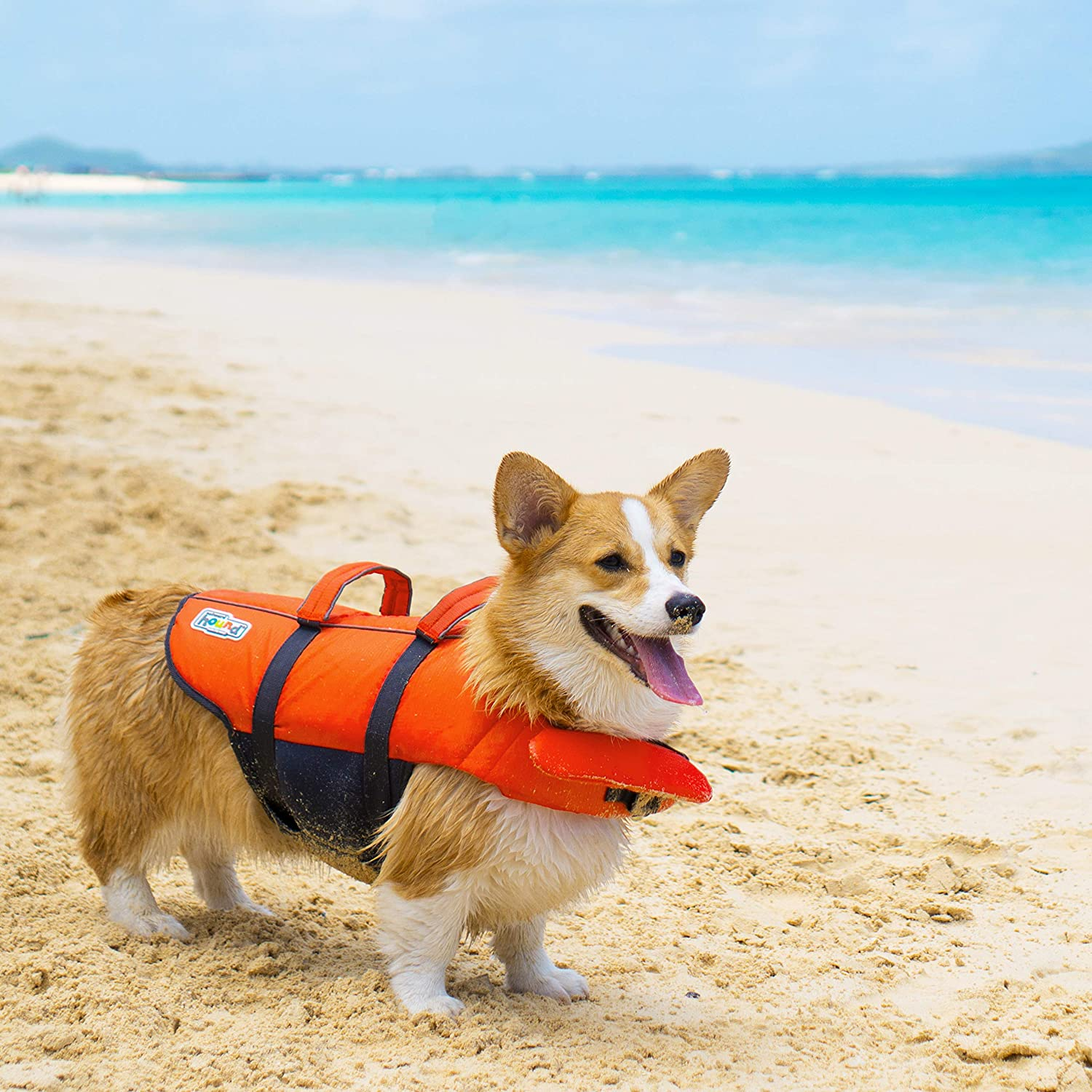 Outward Hound Dog Life Jacket