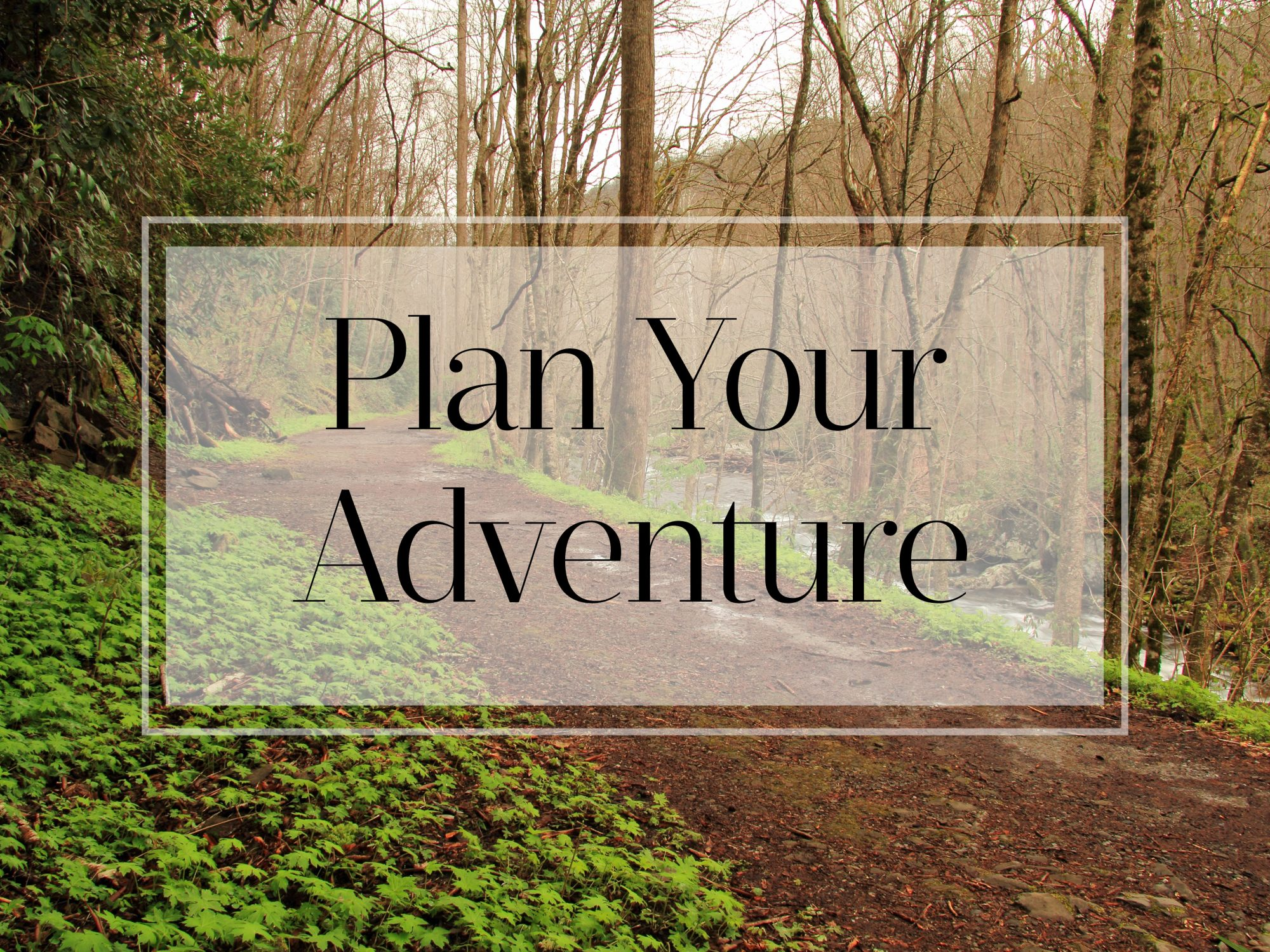 Plan Your Adventure in the Great Smoky Mountains
