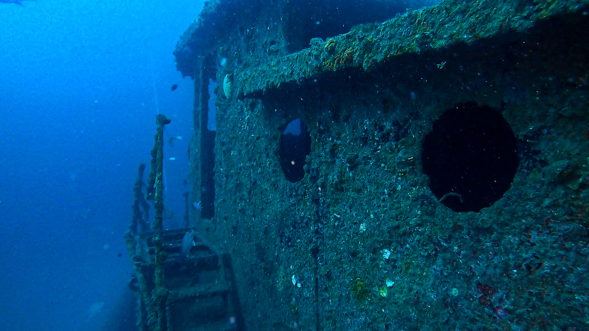 Wreck Diving in Panama City Beach Structure