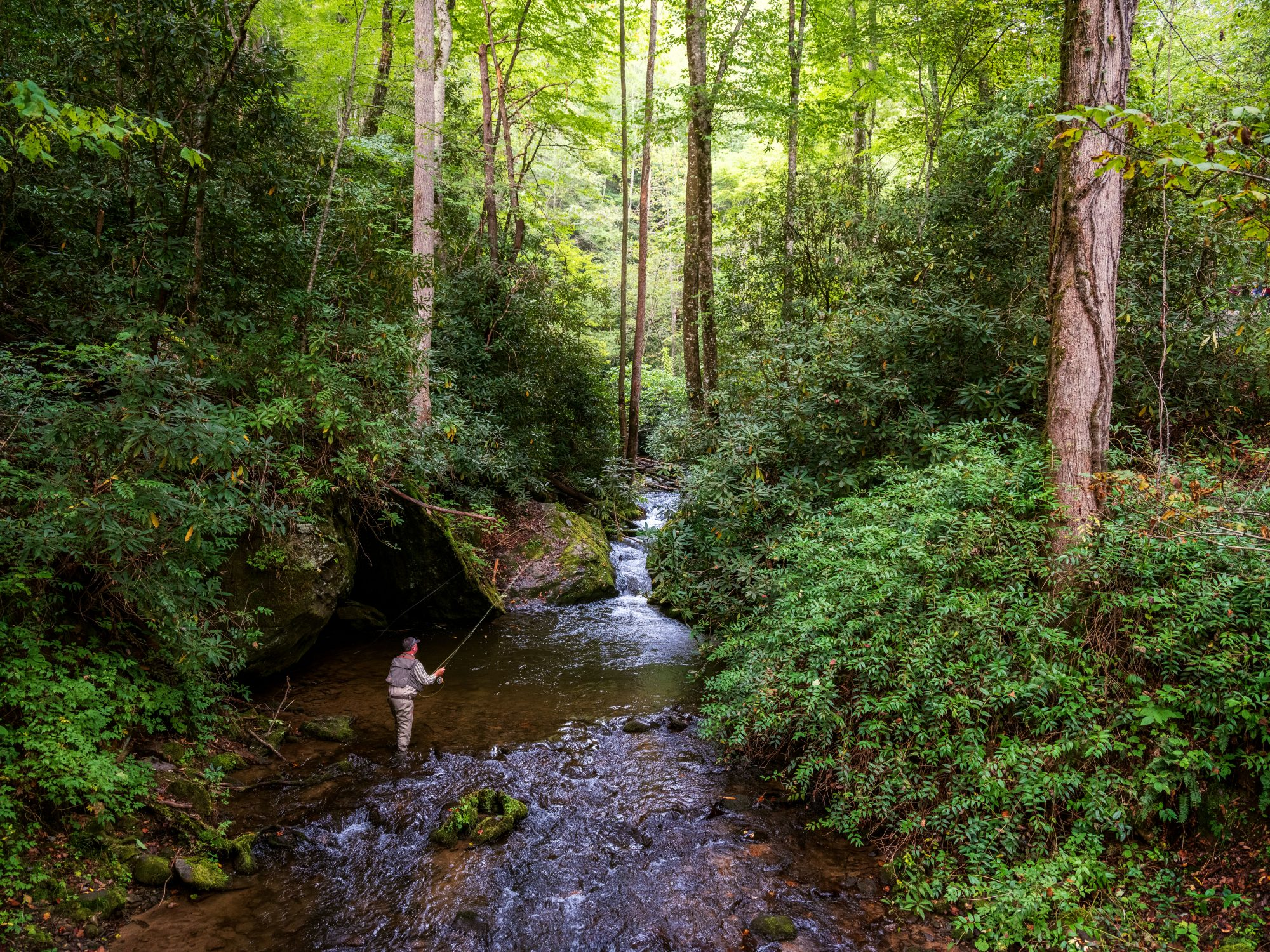 Fishing guide Eugene Shuler fly fishing the Smokies near Bryson City, North Carolina.