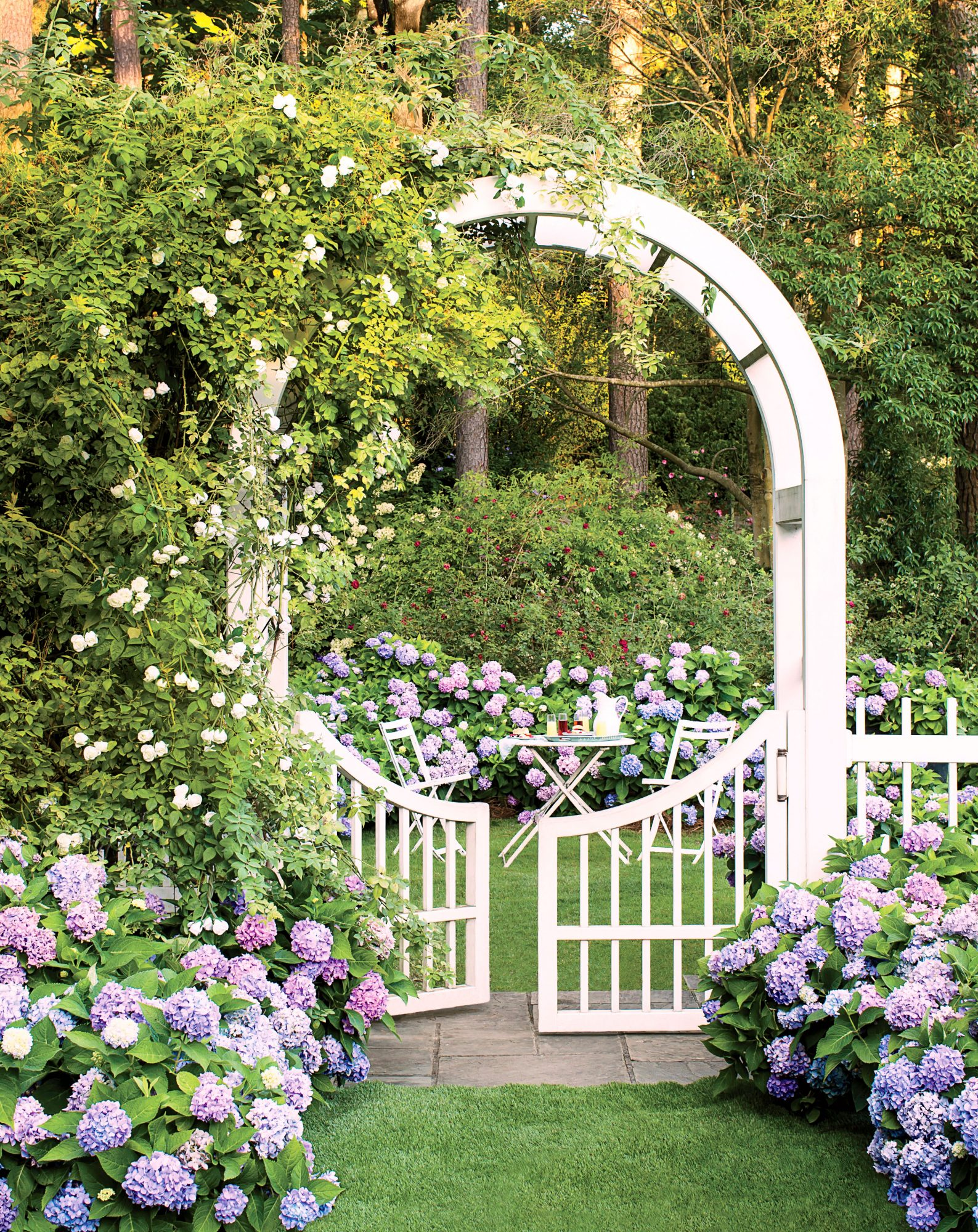 Garden with Arched pergola gate and hydrangea bushes