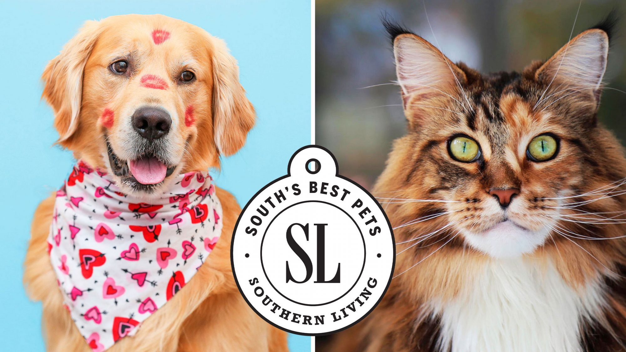 Two winners of Southern Living's South's Best Pets 2021
