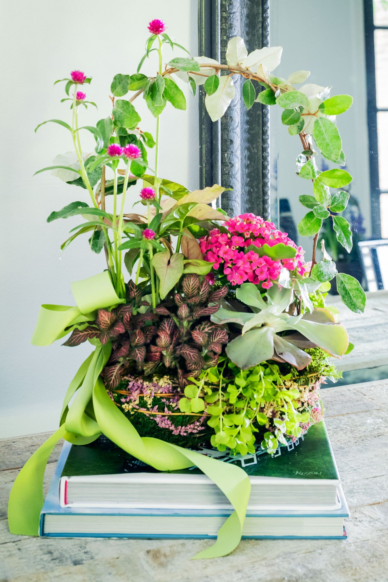 Spring growing arrangement with pink flowers, moss, and branch formed like basket handle