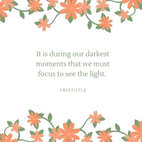 Aristotle May Quote