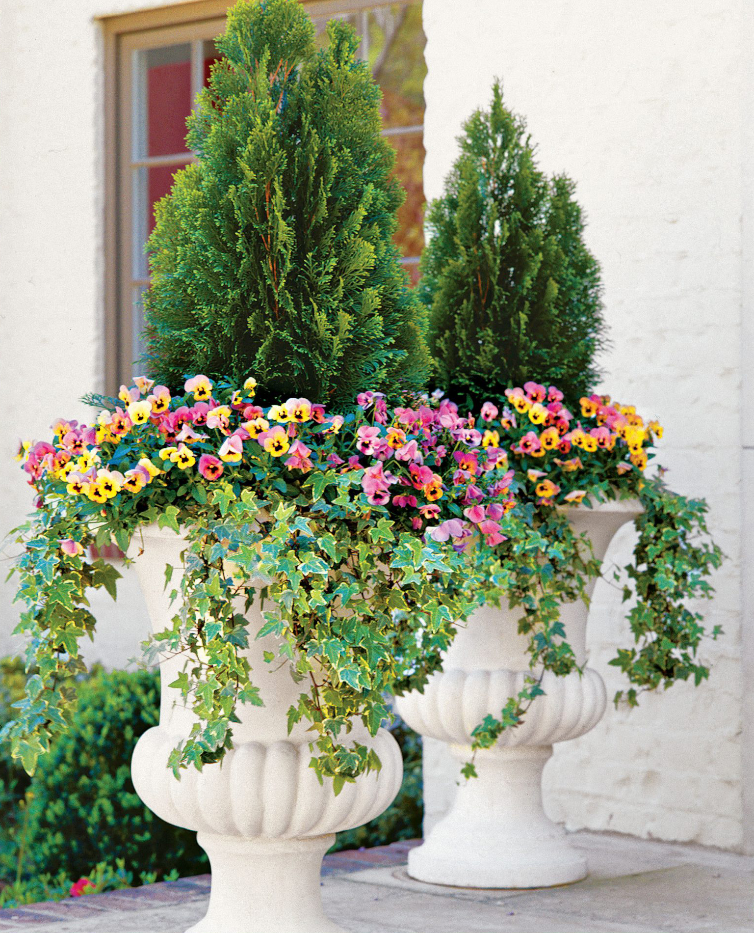 Structured Shade Container Garden