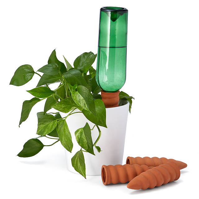 Plant Sitter Watering Stakes