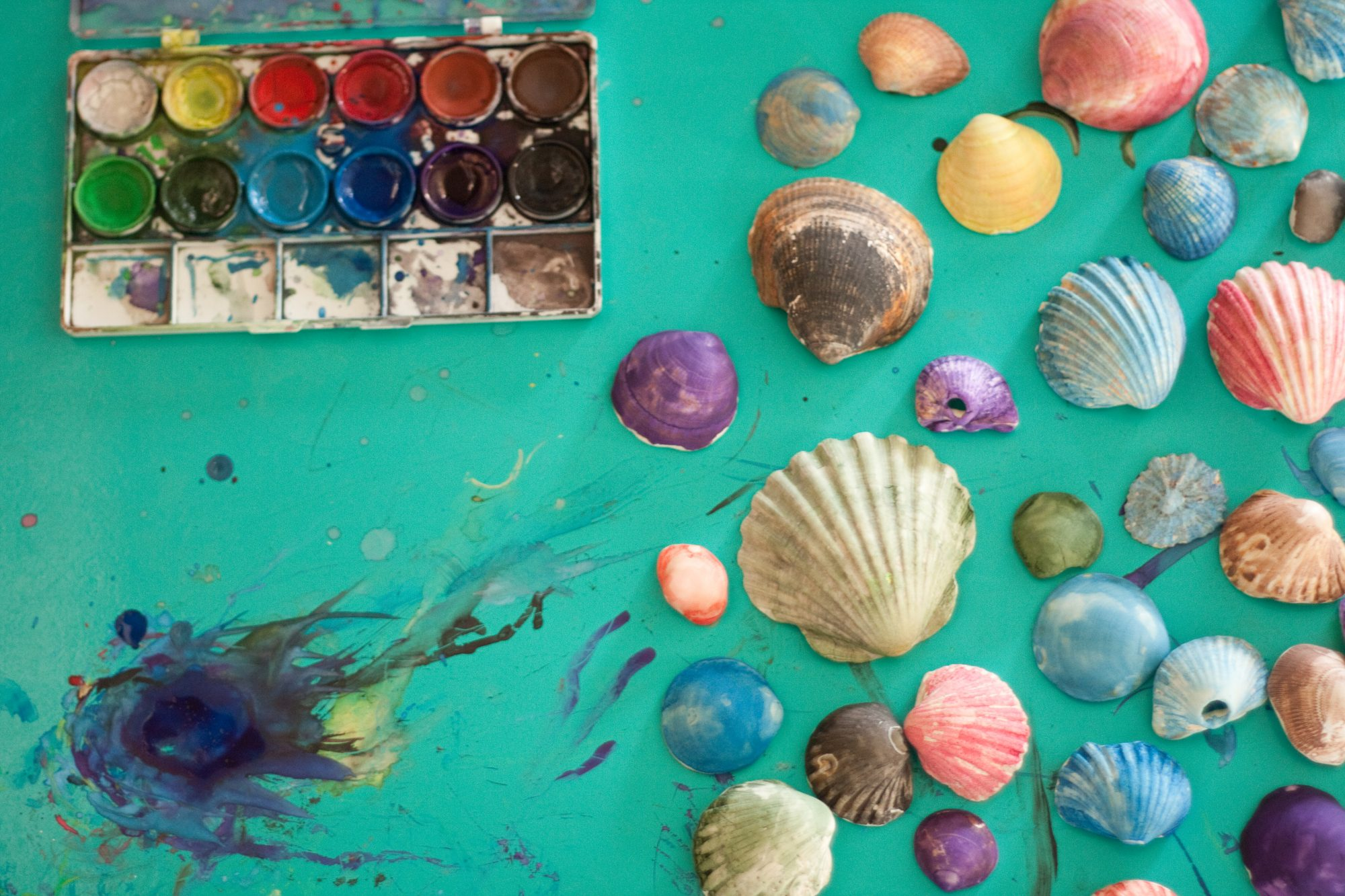 Watercolor painted sea shells over a green stained background