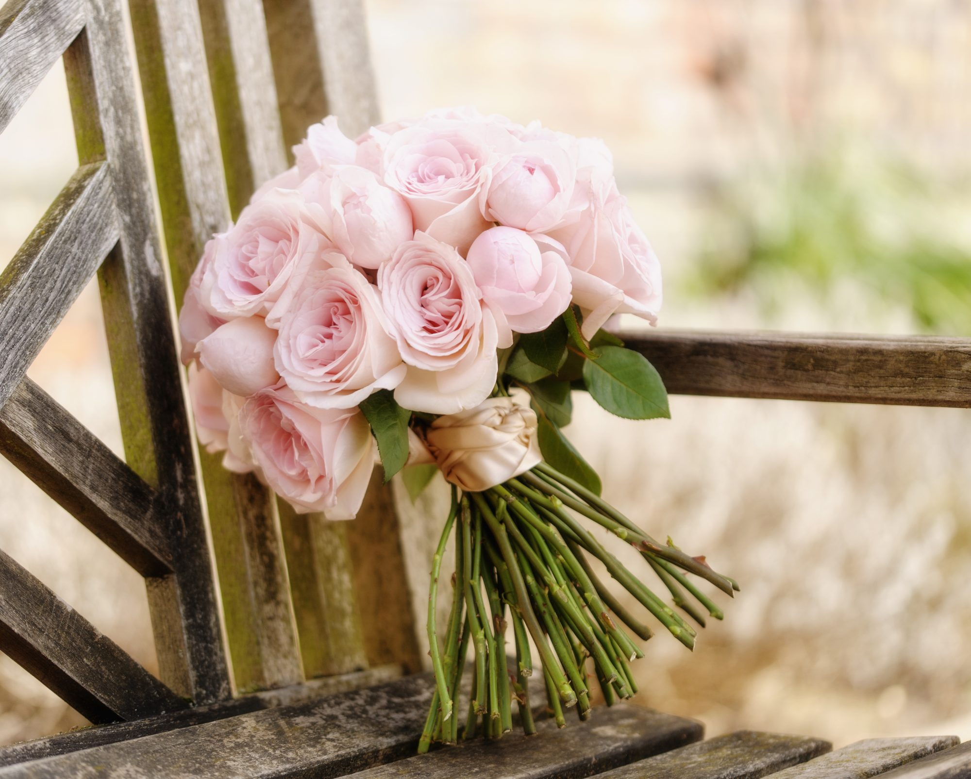 Close up of bouquet of roses on wooden bench