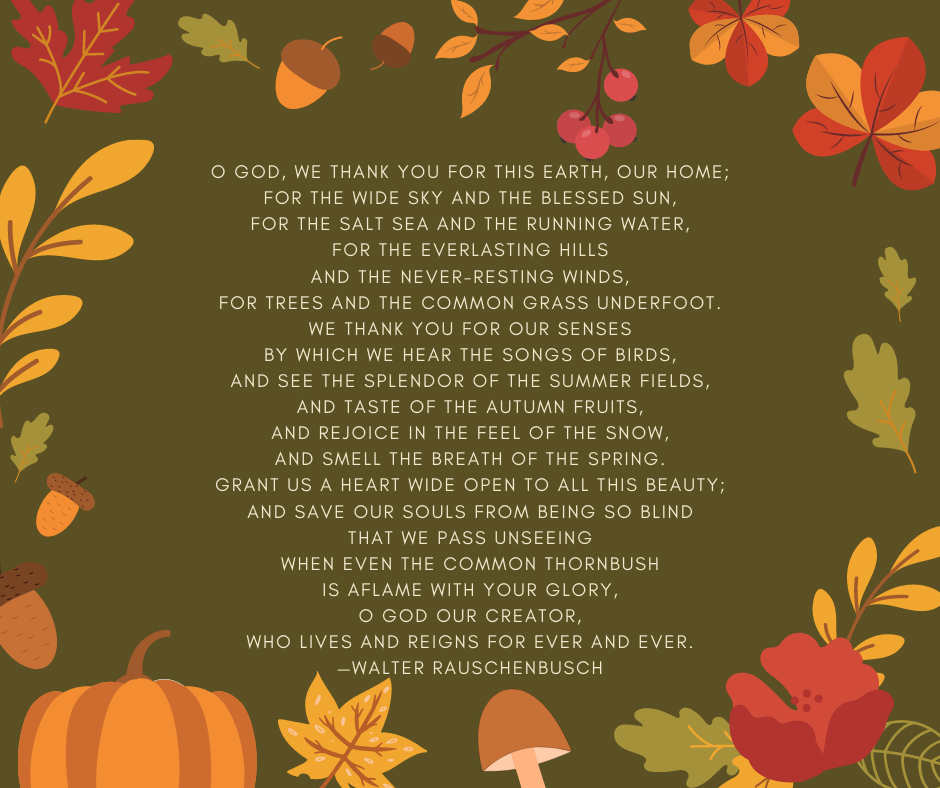 O God, we thank you for this earth, our home; for the wide sky and the blessed sun, for the salt sea and the running water, for the everlasting hills and the never-resting winds, for trees and the common grass underfoot. We thank you for our senses by which we hear the songs of birds, and see the splendor of the summer fields, and taste of the autumn fruits, and rejoice in the feel of the snow, and smell the breath of the spring. Grant us a heart wide open to all this beauty; and save our souls from being so blind that we pass unseeing when even the common thornbush is aflame with your glory, O God our creator, Who lives and reigns for ever and ever. —Walter Rauschenbusch