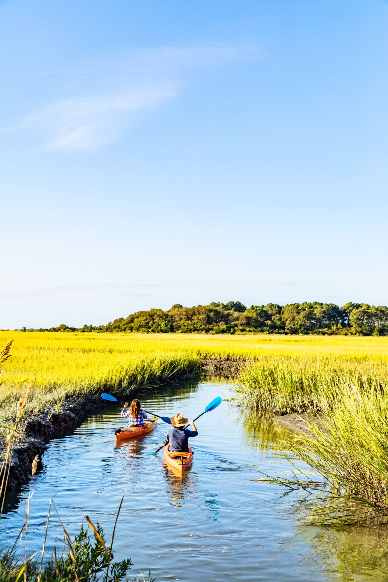 Kayaking in the Eastern Shore of Virginia National Wildlife Refuge with SouthEast Expeditions