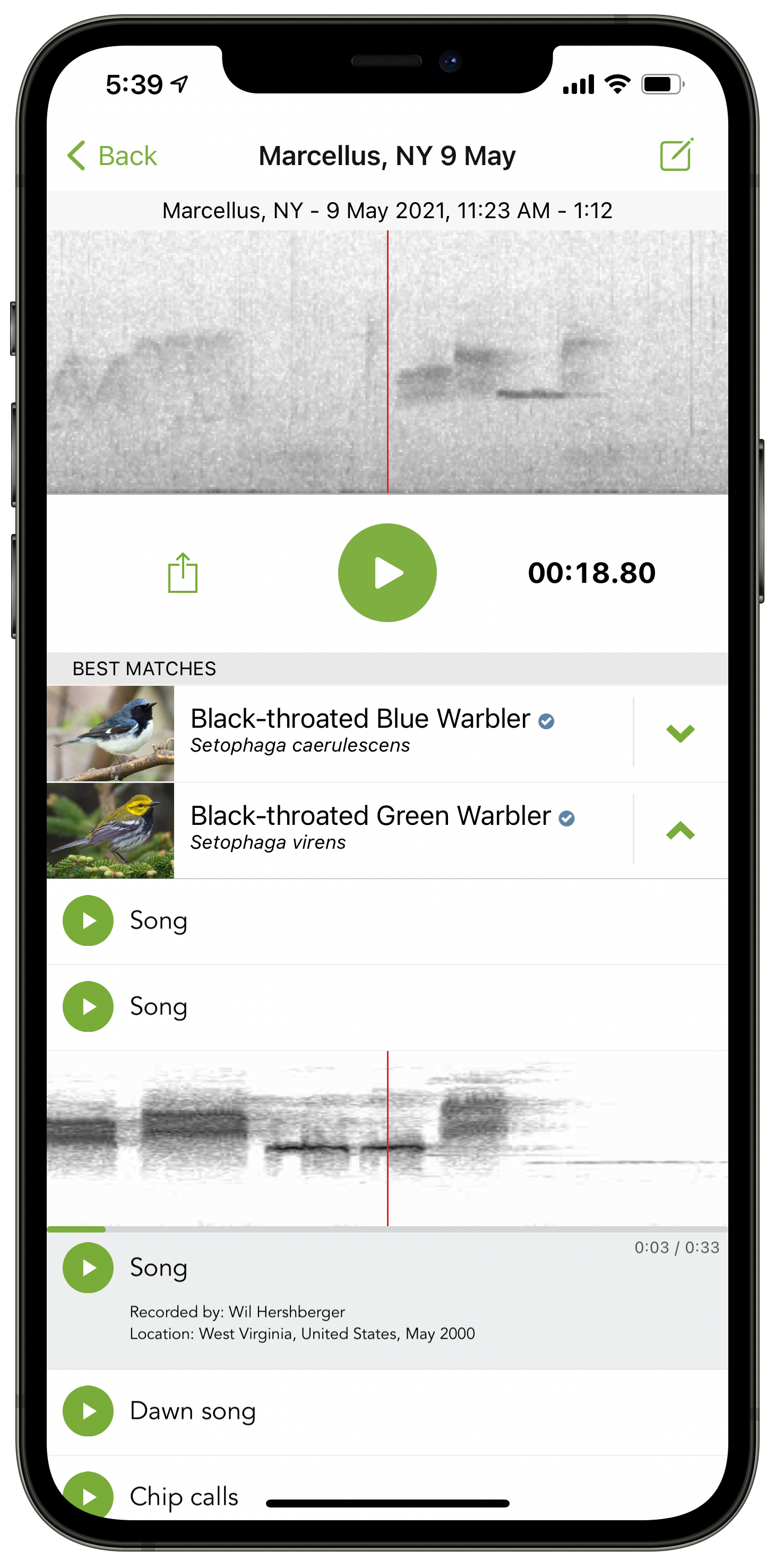 Sound ID - iOS - Best matches - Black-throated Blue and Black-throated Green Warblers