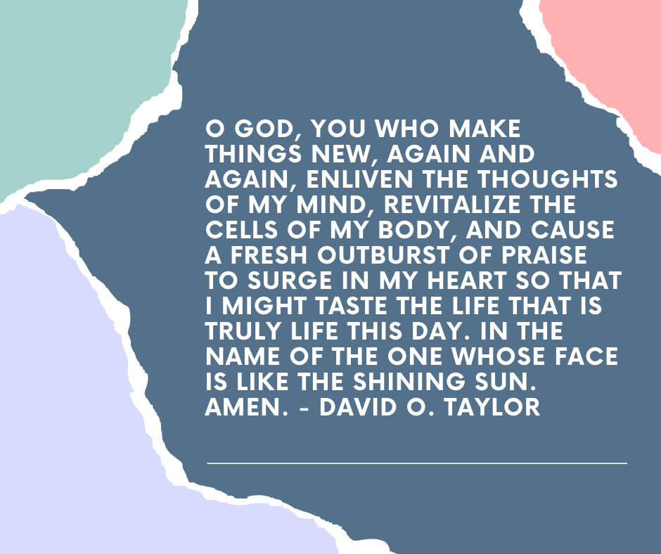 O God, you who make things new, again and again, enliven the thoughts of my mind, revitalize the cells of my body, and cause a fresh outburst of praise to surge in my heart so that I might taste the Life that is truly life this day. In the name of the one whose face is like the shining sun. Amen. - David O. Taylor