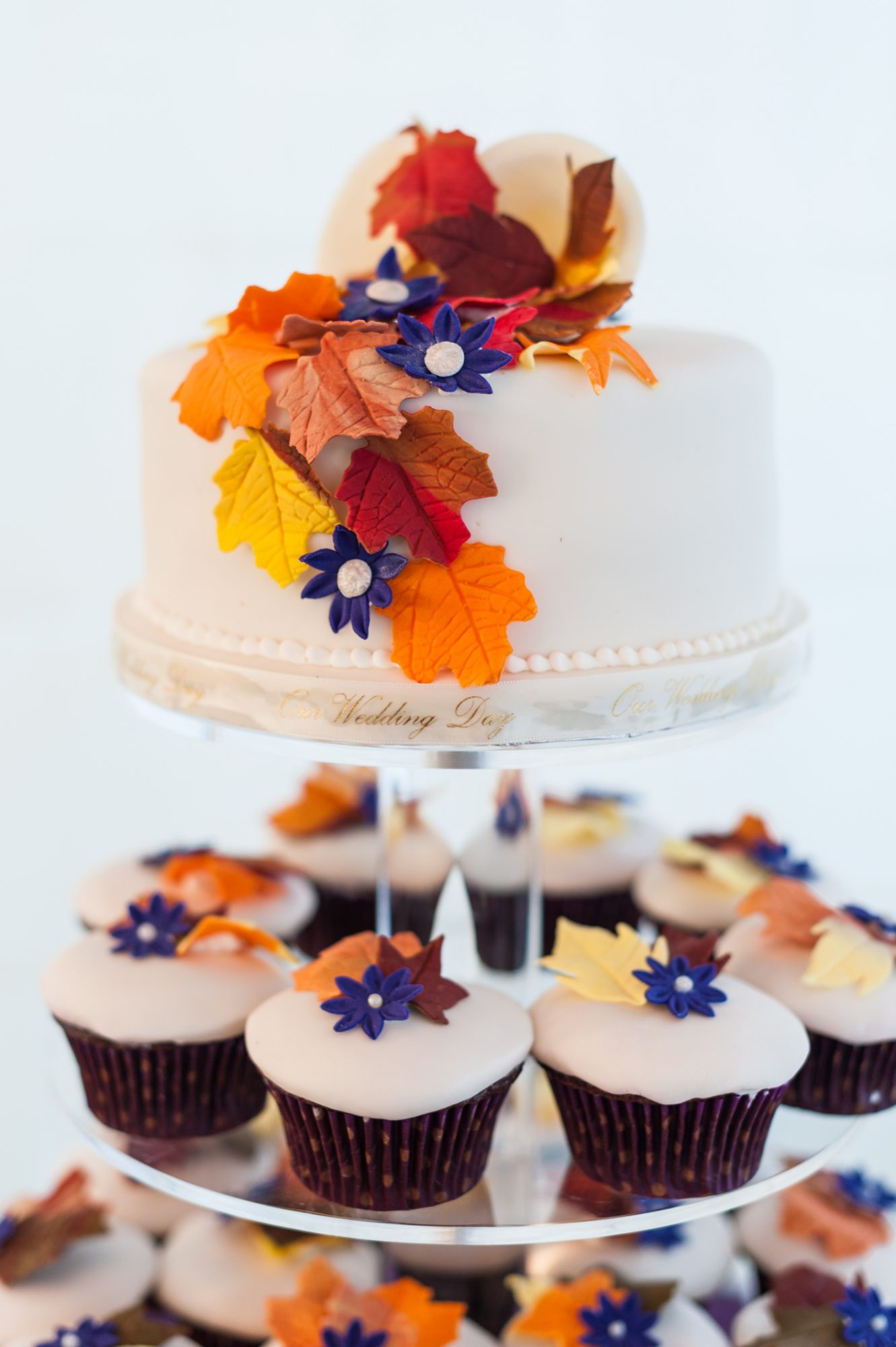 Bright colored fall themed cupcakes