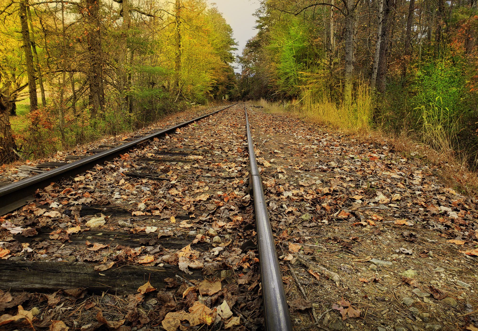 Railroad Tracks on an Autumn Day in the Appalachian Mountains - Fallen Leaves