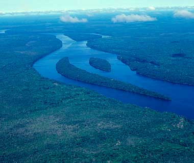 The World's Most Pristine Forests: Central Amazon, Brazil and Peru