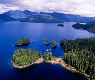 The World's Most Pristine Forests: Clayoquot Sound, Canada
