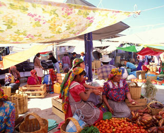 Life-Changing Trips: Mexico, Central & South America -  Oaxaca and Puebla with CUESA