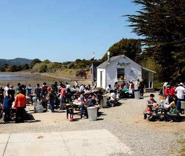200907-oyster-tomales