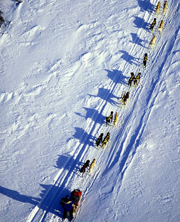 The World's Top 10 Aerial Tours: Iditarod Flight, Alaska