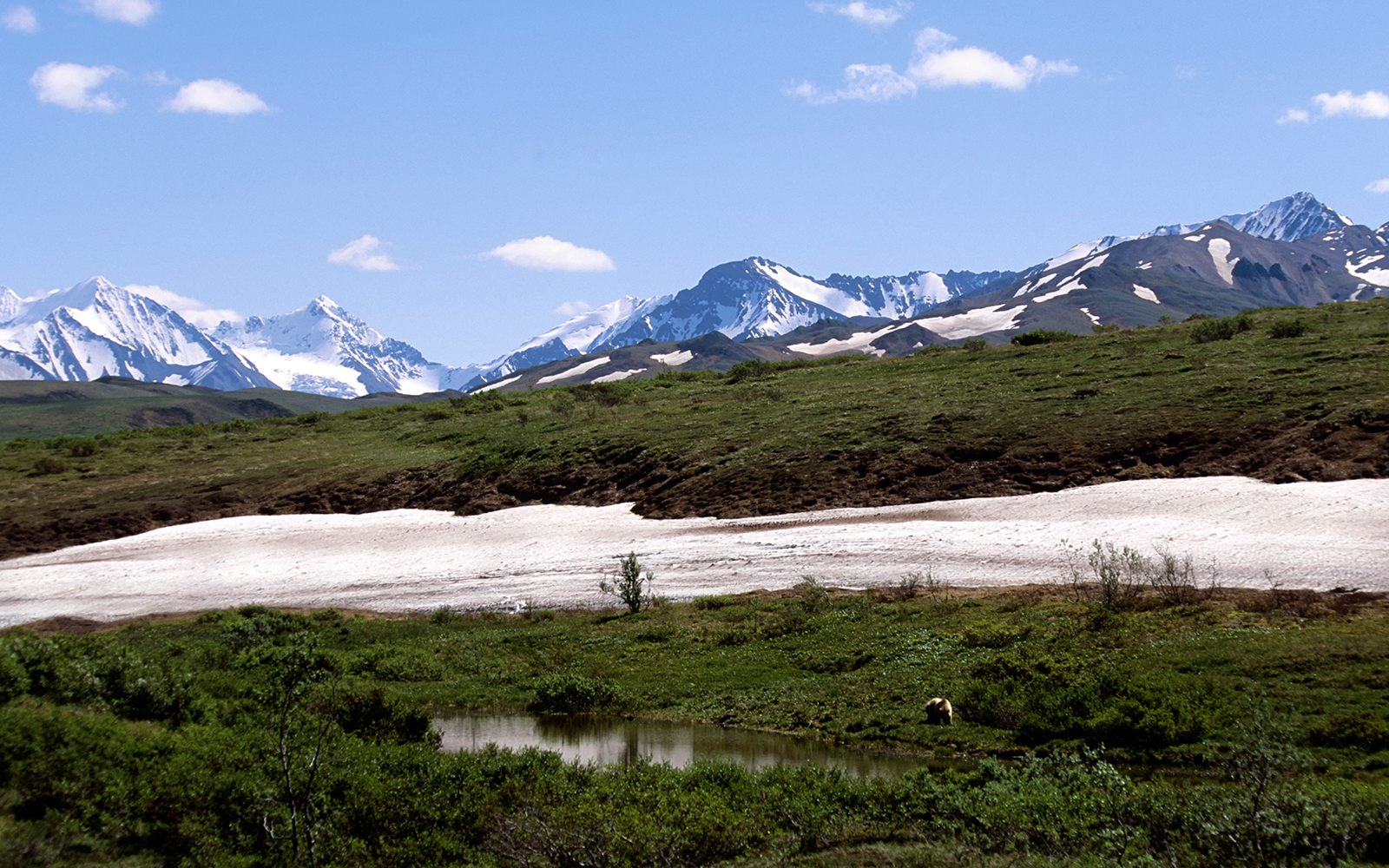 Best U.S. National Park Views: Sable Pass, Denali National Park
