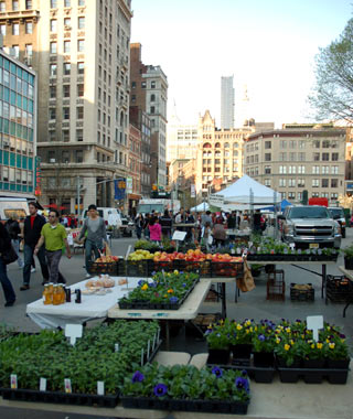 Union Square Greenmarket, New York, New York