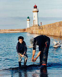 Exploring Hidden French Islands: Cleaning squid at Le Palais port