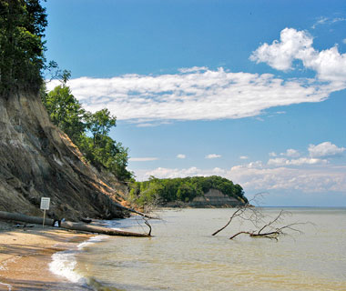 10 Best U.S. Shelling Beaches: Calvert Cliffs State Park, MD