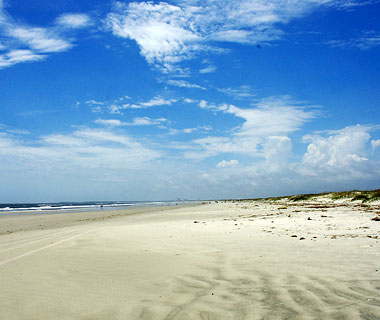 10 Best U.S. Shelling Beaches: Cumberland Island, GA