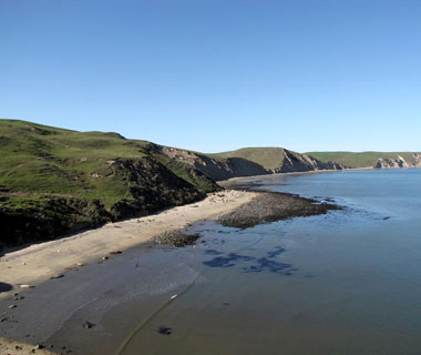10 Best U.S. Shelling Beaches: Point Reyes National Seashore, CA