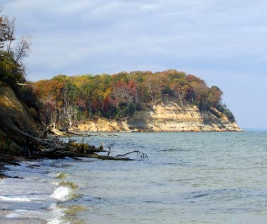 Calvert Cliffs State Park, MD