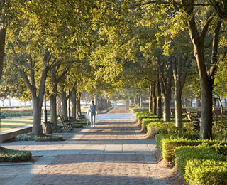 10 Great American Public Spaces: Waterfront Park, Charleston, SC