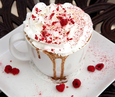 America's Best Hot Chocolate: The Cocoa Tree