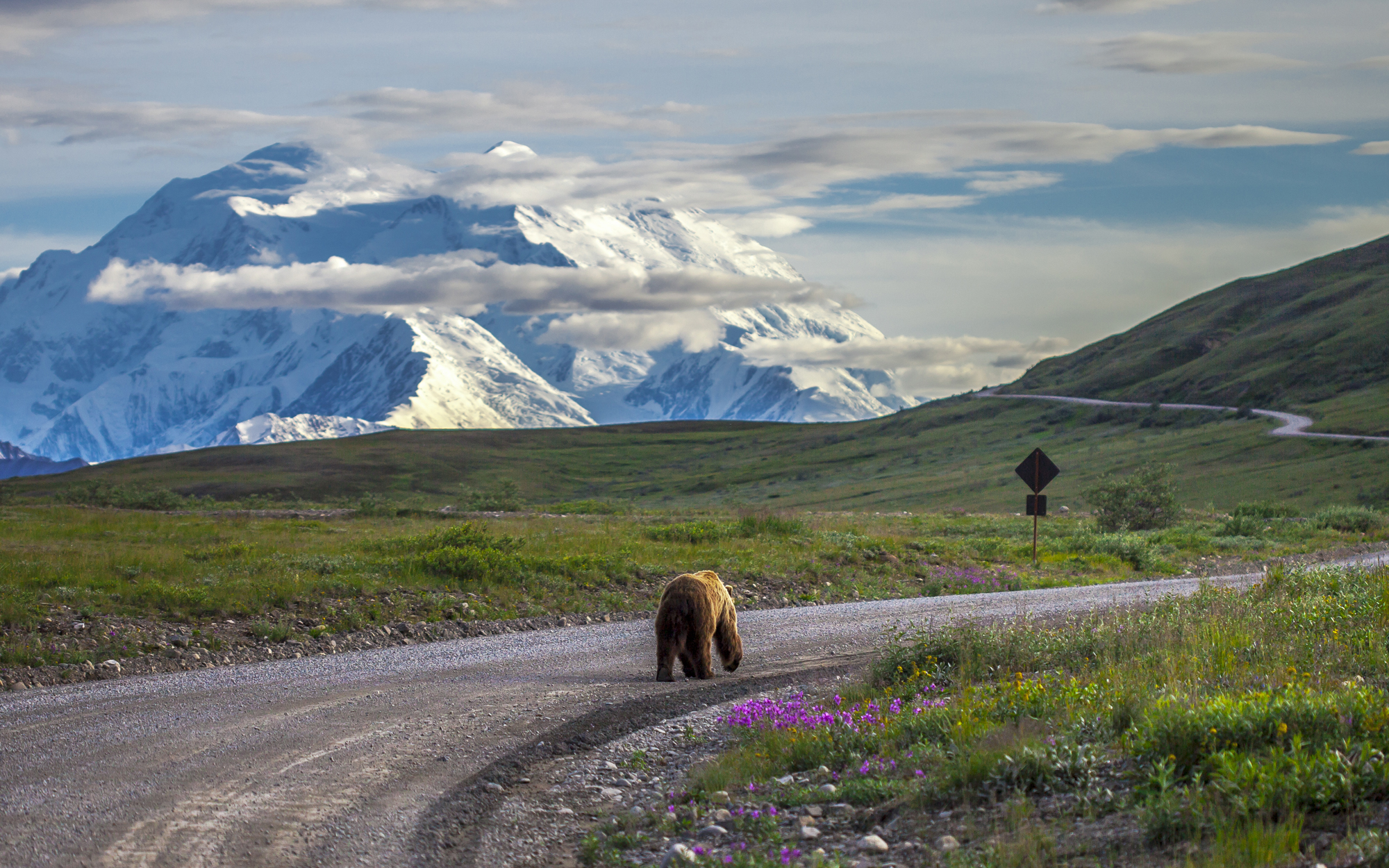 Denali National Park and Wildlife Preserve, AK