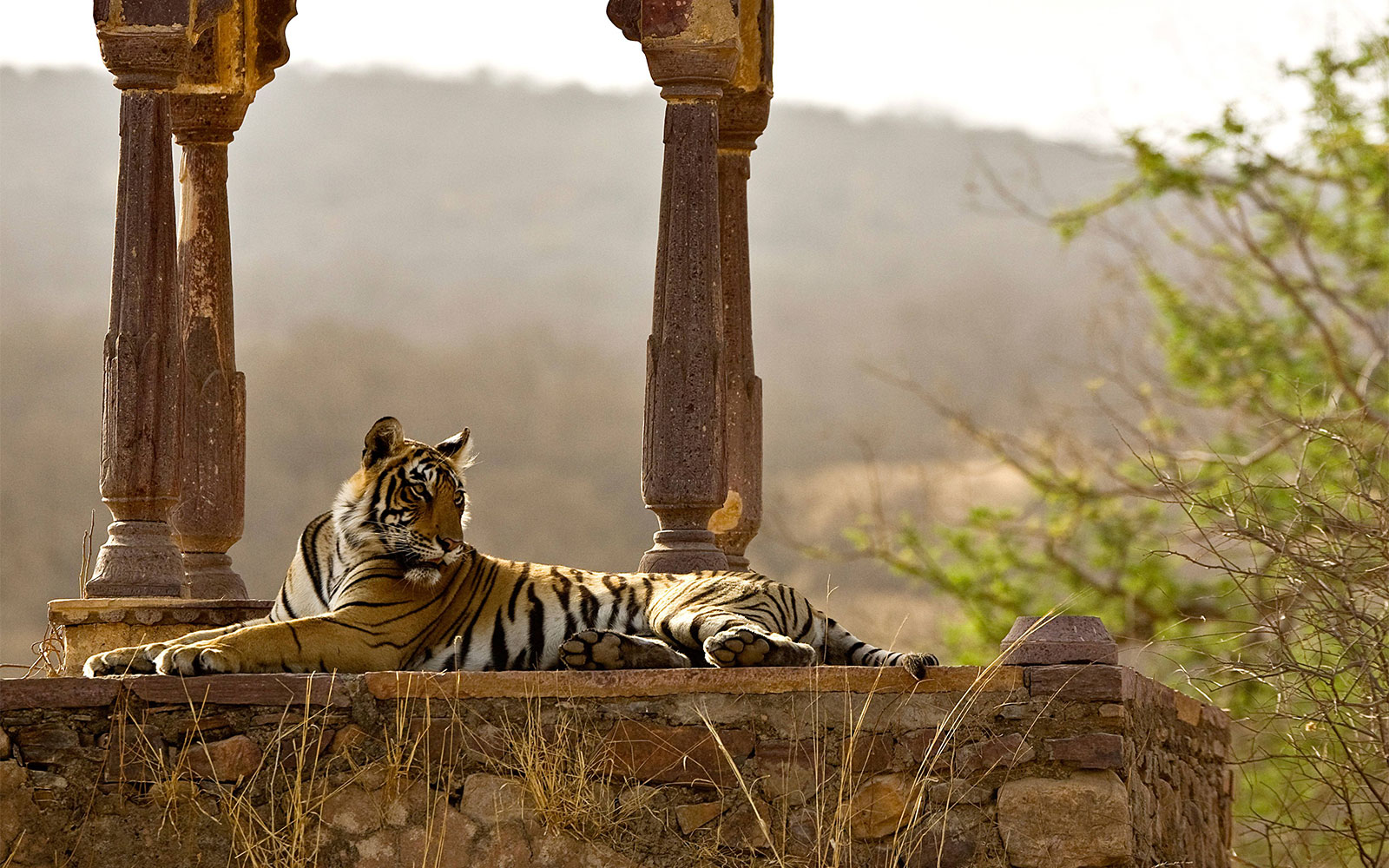 Best Life-Changing Trips: Rajasthan