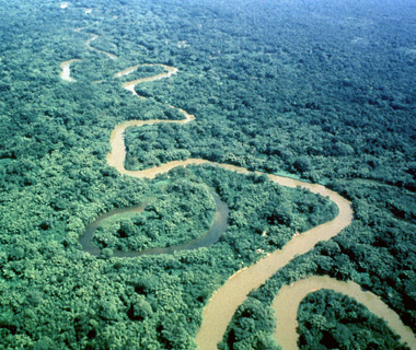 World's most endangered sites: Rio Platano Biosphere Reserve, Honduras