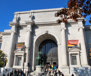 """world's most-visited museums: American Museum of Natural History"