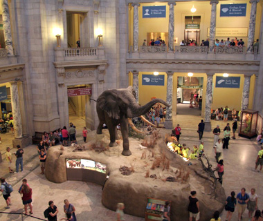No. 3 Smithsonian National Museum ofNatural History, Washington,D.C.